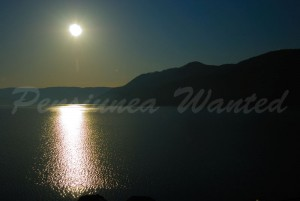 pensiunea_wanted_16
